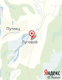Печорская ЦРБ, Фельдшерско-акушерский пункт